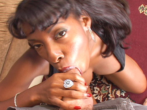 Apologise, but, vanessa blue sucking cock