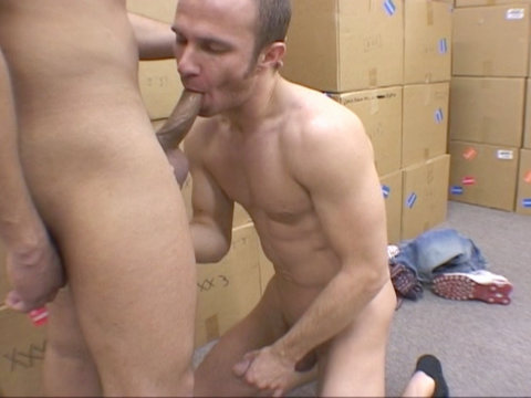 Handymen having hardcore gay oral and anal sex in this scene