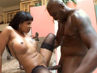 Hardcore interracial anal action vids from this Lex series