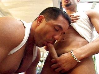 paul carrigan gay porn